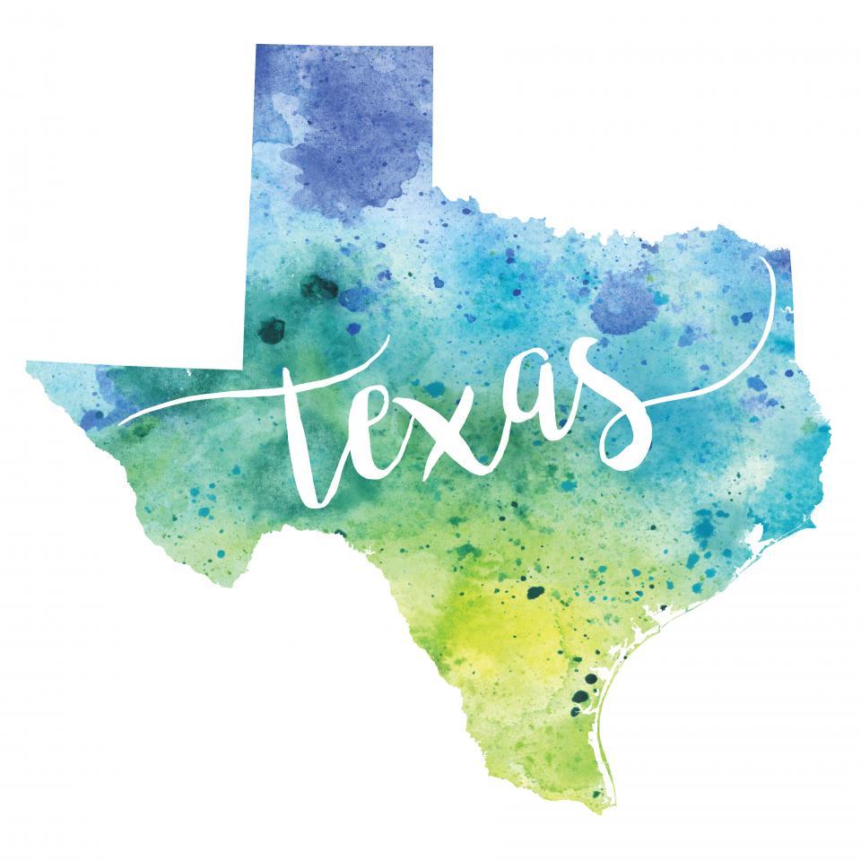 MTMI Texas
